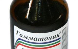 Узнаем, что такое Гамматоник