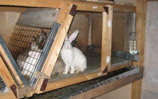 Как сделать клетки для кроликов?