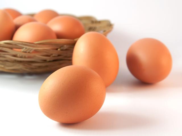 Как отличить петуха от курицы, как различить цыплят: суточных, недельных, определяем пол в 3-4 месяца