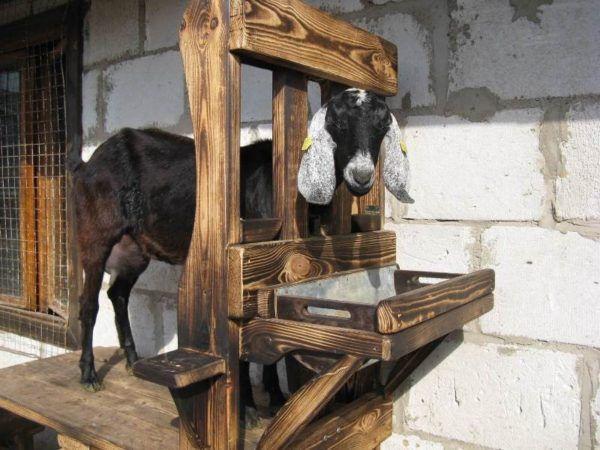 Кормушки для коз под сено и траву делаем своими руками по схеме