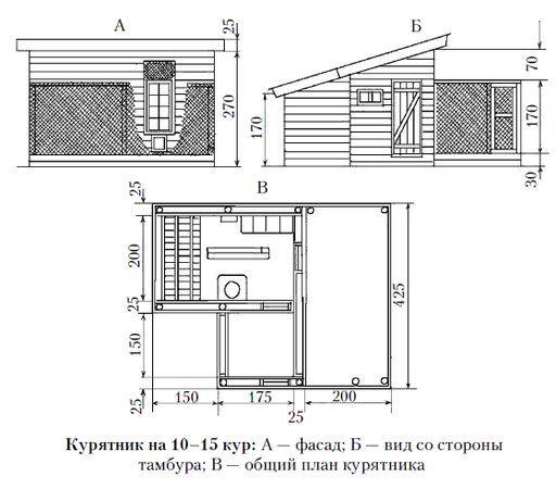 Курятник своими руками на 10 кур: зимний, как построить, подготовка и этапы строительства