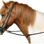 Недоуздок для лошади: как сделать своими руками, как надеть, инструменты и материалы