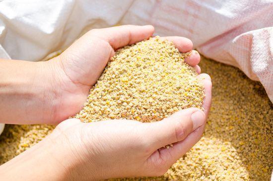 Комбикорм для бройлеров своими руками в домашних условиях, состав корма