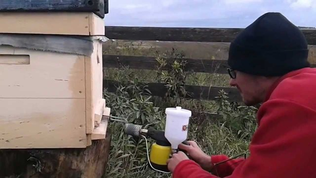 Обработка пчел дым-пушкой: Бипин + керосин, Бисанар, инструкция