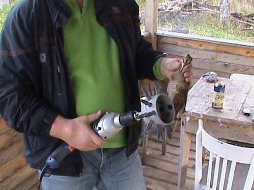 Как ощипать утку правильно: механические и ручные способы, обработка без пеньков
