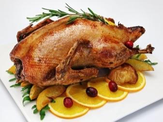 Когда рубить гусей на мясо, в каком возрасте и сколько должен весить гусь