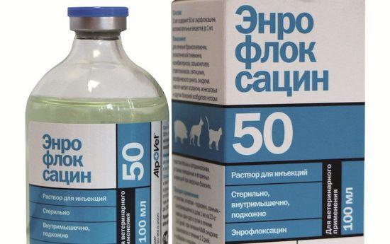 Энрофлоксацин инструкция по применению в ветеринарии: для птиц, кроликов, собак, кошек18