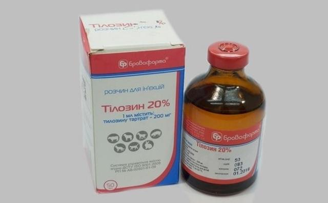Инструкция по применению Тилозин 50, 200 для птиц: дозировка для цыплят и взрослых кур