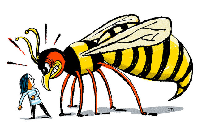 Чем отличается оса от пчелы: как различить по внешнему виду и поведению