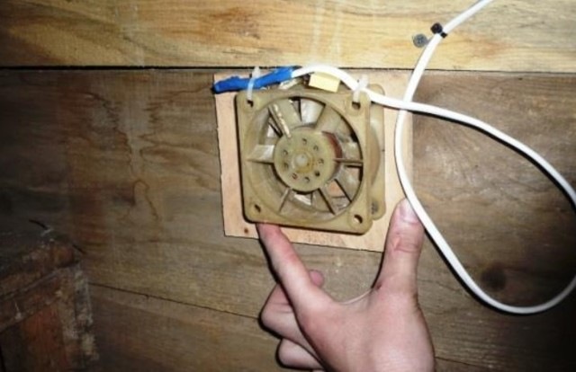 Вентиляция в курятнике, делаем правильную схему вытяжки своими руками