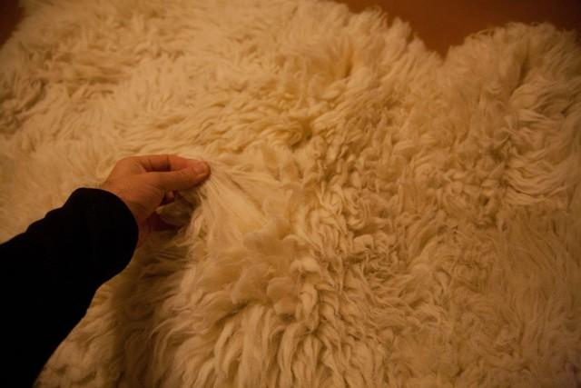 Выделка овечьей шкуры в домашних условиях, этапы обработки