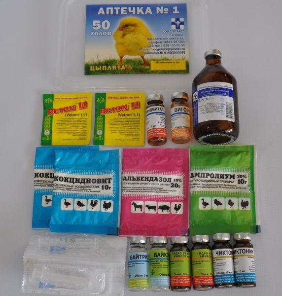 Глисты у кур несушек, цыплят, симптомы и лечение флубенверт, пиперазин
