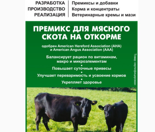 Выращивание и откорм бычков на мясо в домашних условиях: эффективный рацион для быстрого роста