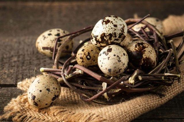 Как проверить свежесть перепелиных яиц, если они всплывают в воде, что это значит