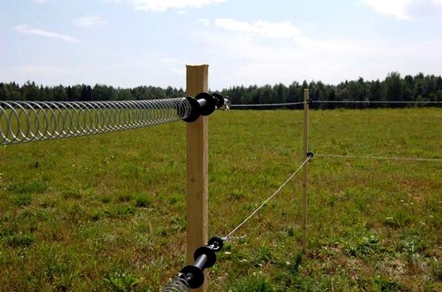 Самодельный электропастух своими руками: схема, материалы, установка изгороди