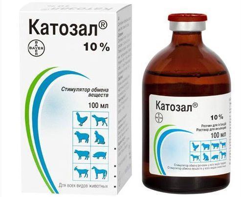 Катозал: инструкция по применению для животных, описание препараты, как использовать