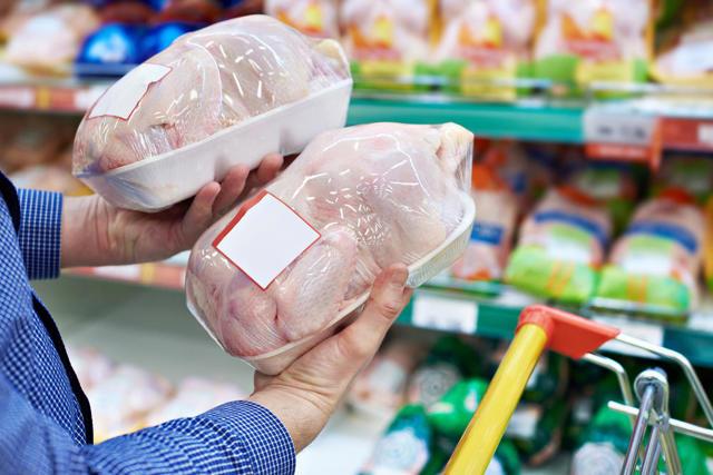 Куры несушки и бройлеры содержание и уход в домашних условиях, выгодно ли это, чем кормить летом и зимой