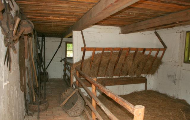 Как ухаживать за лошадью, содержание в домашних условиях для новичка